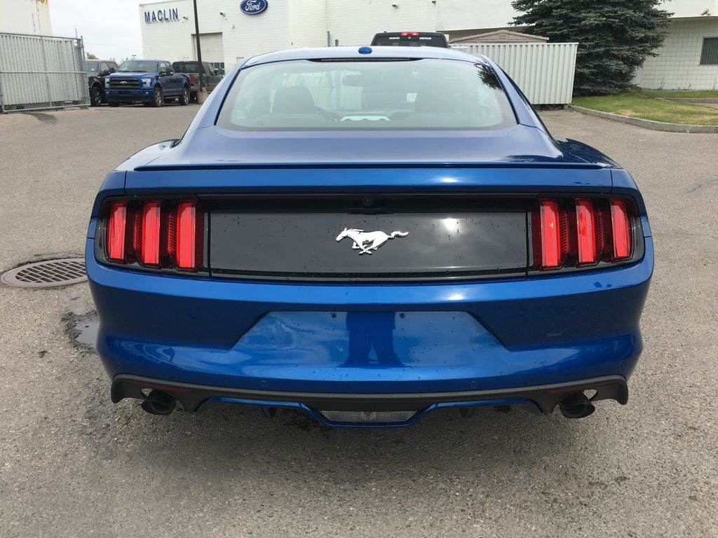 new 2017 ford mustang ecoboost premium in calgary 17mu1277 maclin ford. Black Bedroom Furniture Sets. Home Design Ideas
